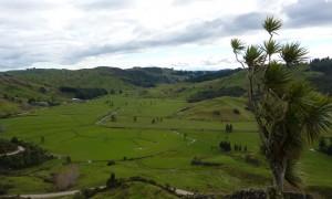 El vergel del edén en la isla norte de Nueva Zelanda