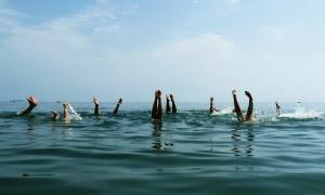 Fecha confirmada de las Working Holiday Visa 2012-2013 en Nueva Zelanda para españoles
