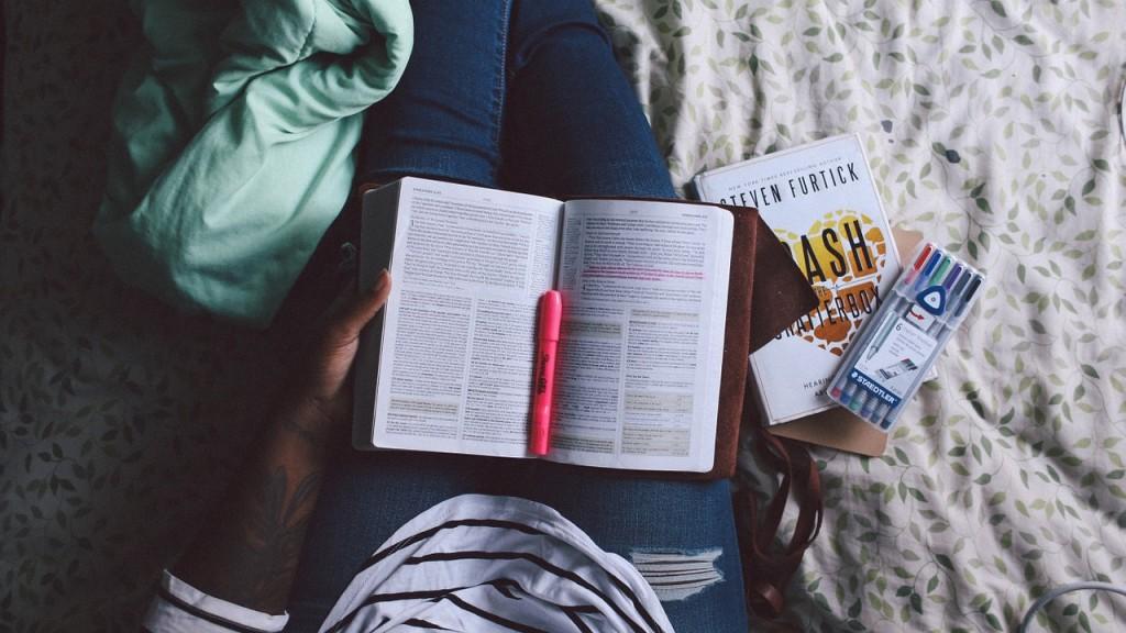 estudiar-ingles-nueva-zelanda-comoserunkiwi