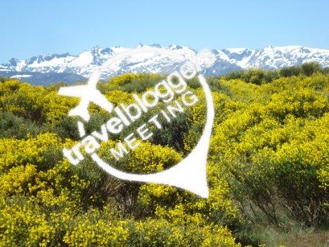 Presentación de Cómo ser un kiwi en el Travel Blogger´s Meeting de Gredos