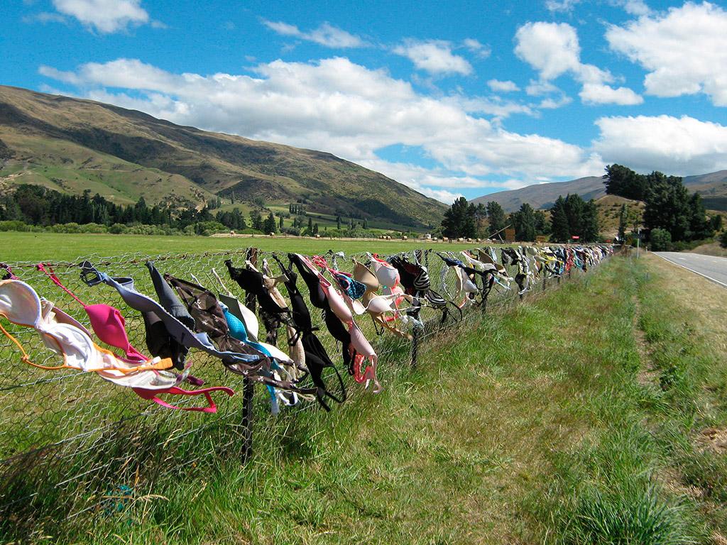 Qué ver en Otago de Nueva Zelanda, valla de sujetadores de Cardrona