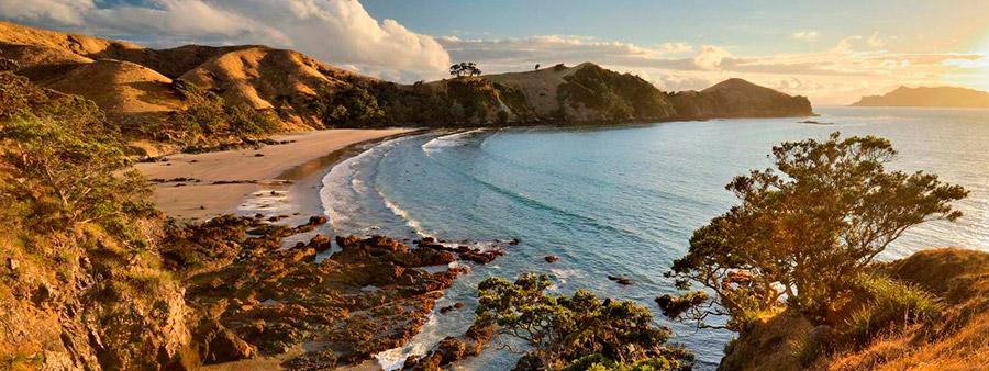 Playa en la isla Great Barrier de Nueva Zelanda