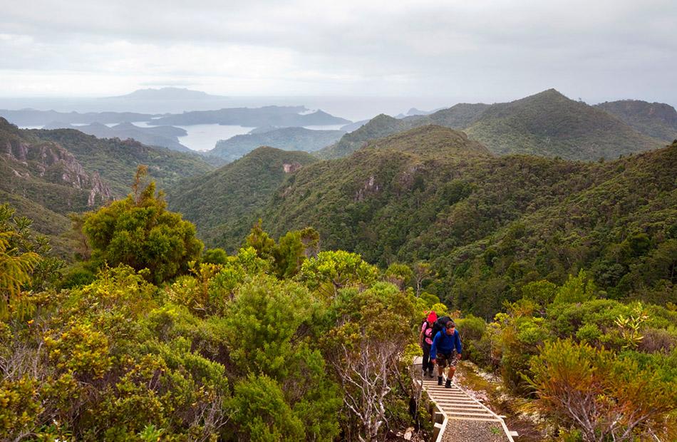 Trekking por la isla Great Barrier en Nueva Zelanda