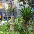 Visita al museo y casa azul de Frida Kahlo y Diego Rivera en Ciudad de México