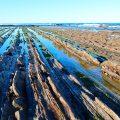 Rasa mareal entre Deba y Zumaia