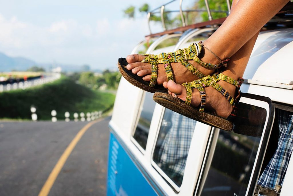 transporte-nueva-zelanda-guia